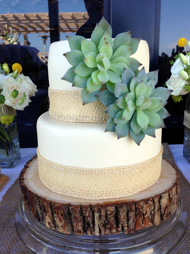 A trendy cake with succulents! Mmmmm.